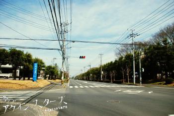 tsukuba12.jpg