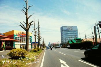 tsukuba14.jpg
