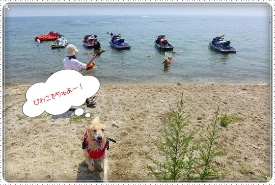 2013,8,16琵琶湖3