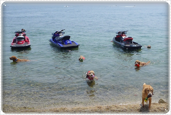 2013,8,16琵琶湖2