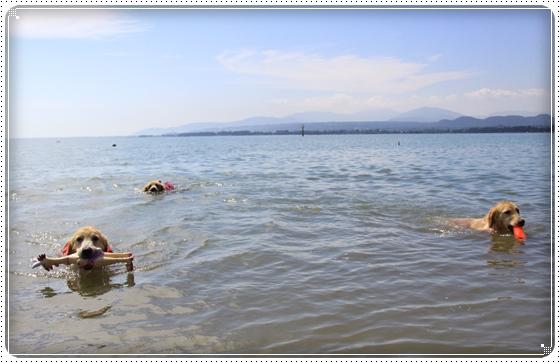 2013,9,21琵琶湖2