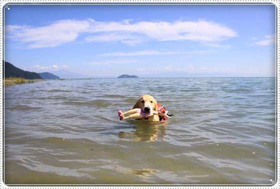 2013,9,22琵琶湖1