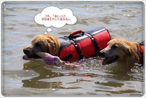 2013,9,22琵琶湖9