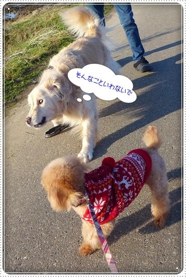 2013,12,25お散歩6