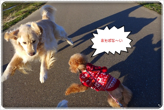 2013,12,25お散歩5