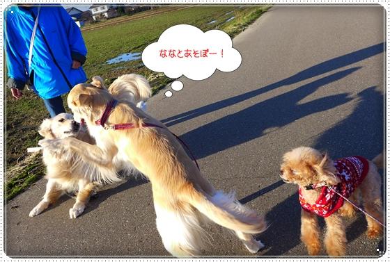 2013,12,25お散歩9