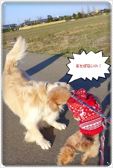 2013,12,25お散歩8