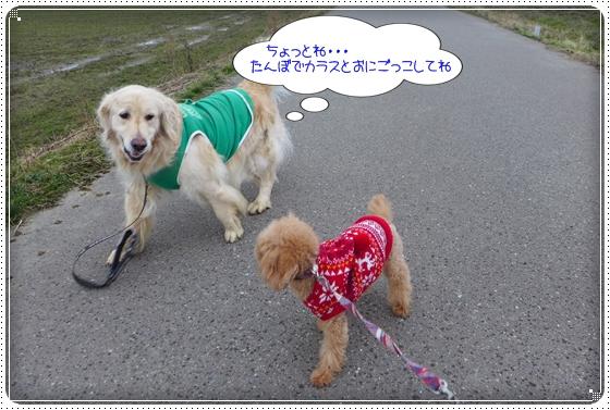 2014,1,18お散歩10