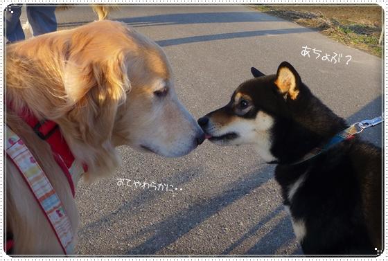 2014,1,24お散歩4
