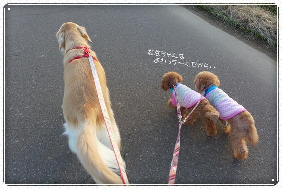2014,1,24お散歩10
