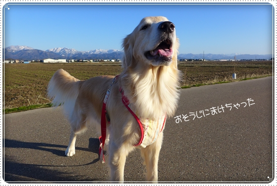2014,1,27お散歩3