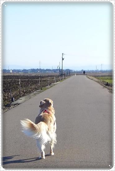 2014,1,30お散歩1