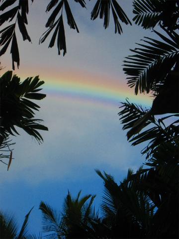 0907hawaii_rainbow.jpg