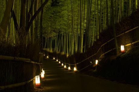 2010_arashiyam_hanatouro_9