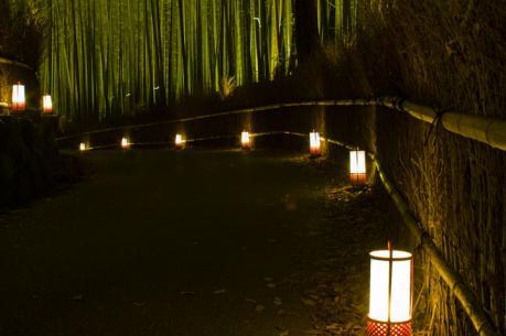 2010_arashiyam_hanatouro_8