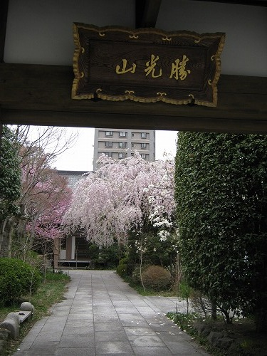 1104tokusenji002.jpg