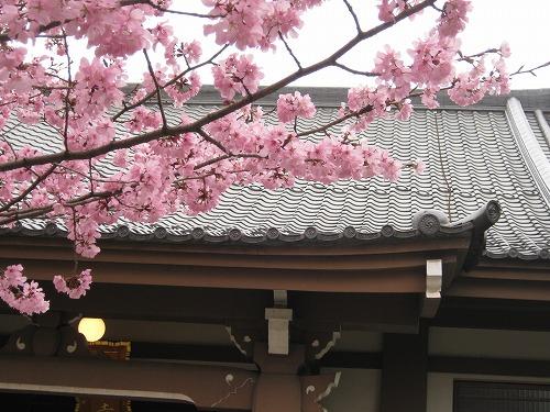 1104tokusenji005.jpg