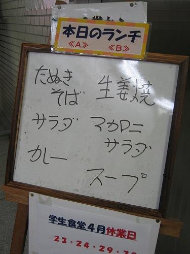 1104yozemi006.jpg