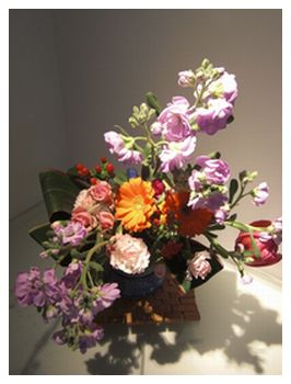 春の花 019