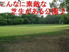 CIMG9087.jpg