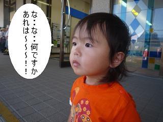 maika10101_20110211211756.jpg