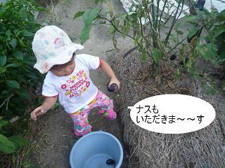 maika22092210.jpg