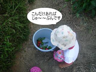 maika22092212.jpg