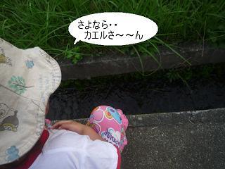 maika22092215.jpg