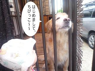 maika22092217.jpg