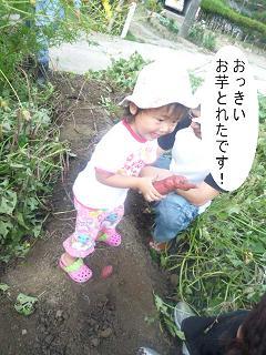 maika2209225.jpg