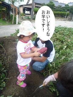 maika2209227.jpg
