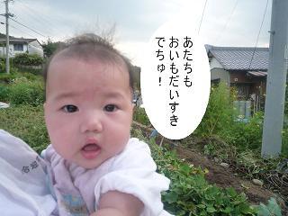 maika2209228.jpg