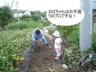 maika2209229.jpg