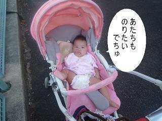maika2210133.jpg