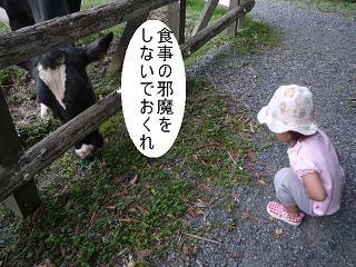 maika22101410.jpg