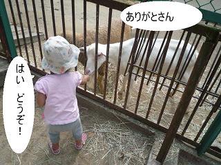 maika22101412.jpg
