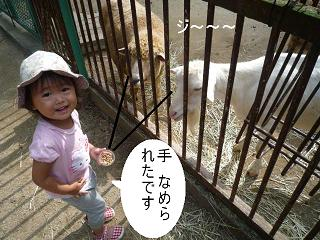 maika22101414.jpg