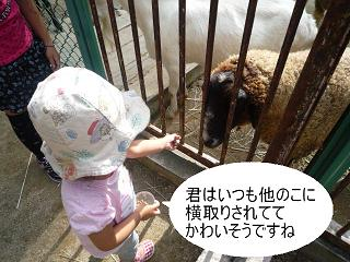 maika22101416.jpg