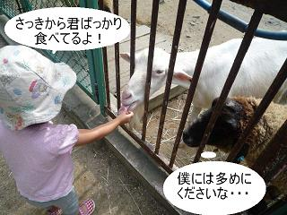 maika22101417.jpg