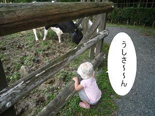 maika2210149.jpg