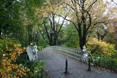 Central Park in rain