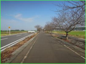 20111008-085500.jpg