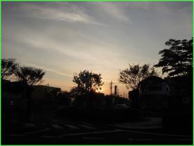 20111105-062512.jpg