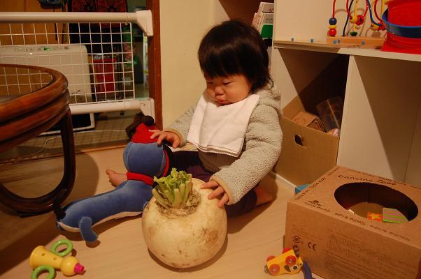 20091210_ごはん2