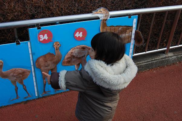 20100130_動物4