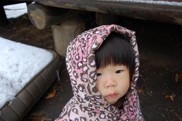 20100202_雪4