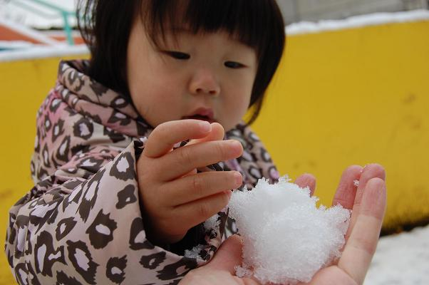 20100202_雪2