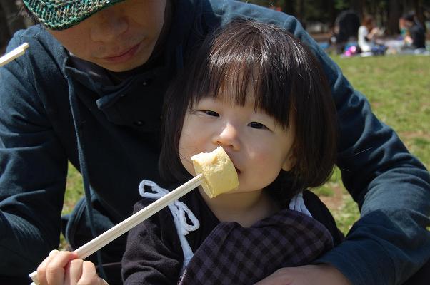 20100410_お花見4