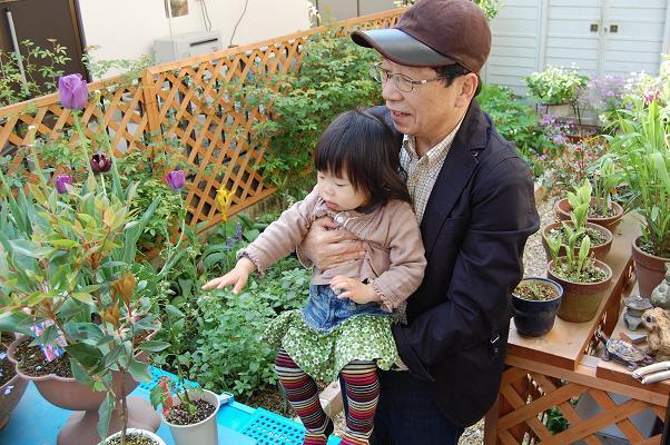 20100429_GW京都2
