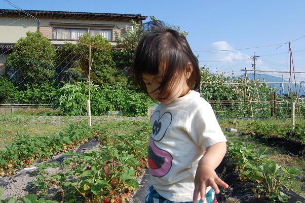 20100604_かんこうさい1